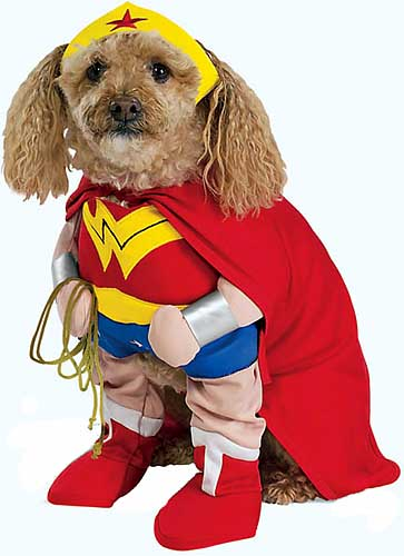 dreiköpfiger hund kostüm